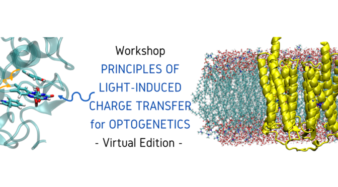 PRINCIPLES OF LIGHT-INDUCED CHARGE TRANSFER FOR OPTOGENETICS